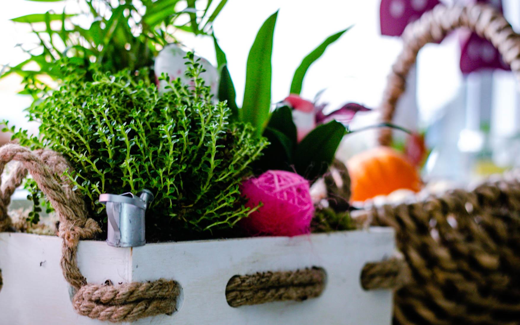 Gießkanne im Blumentopf - Ideen für euren Wichtel